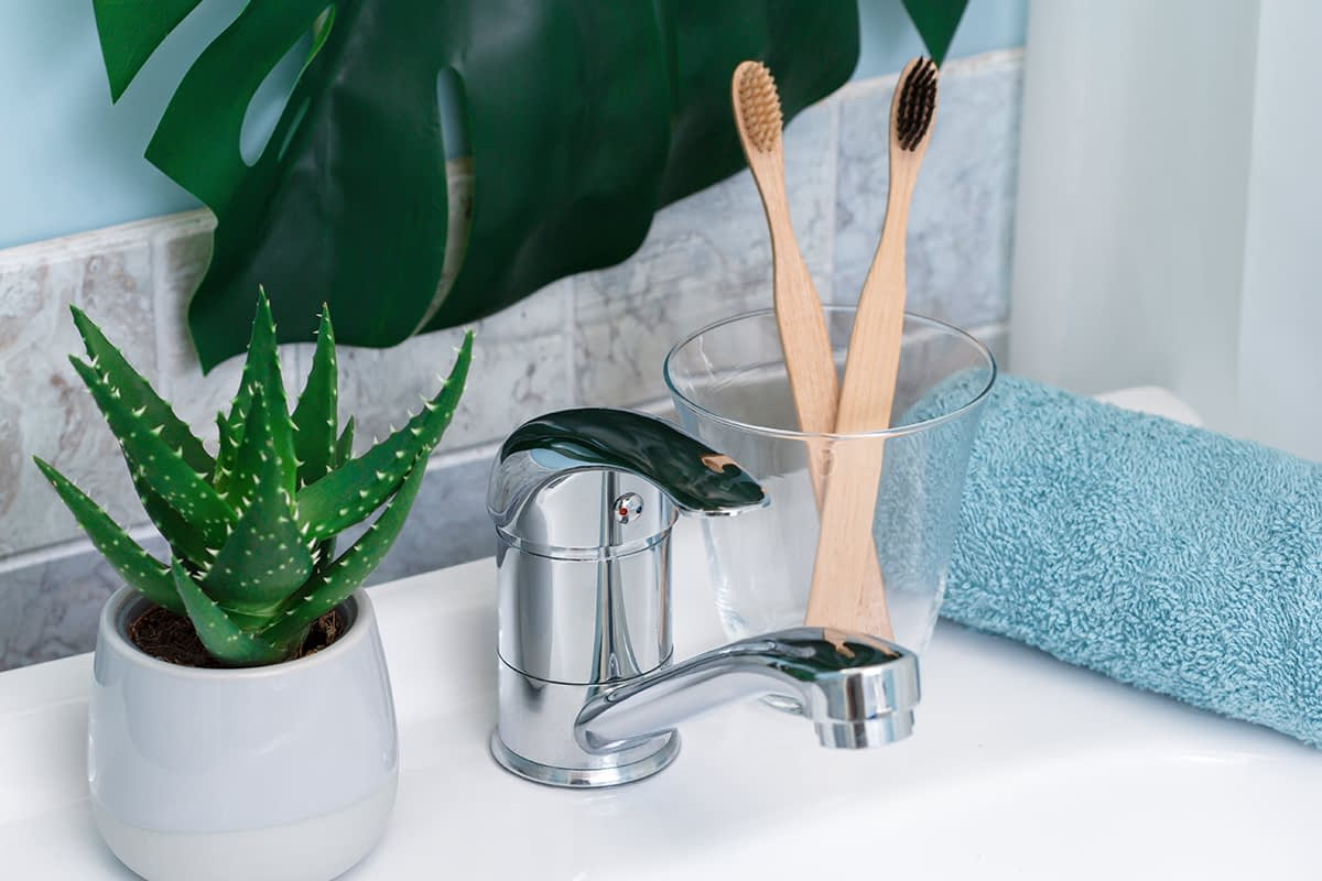 Zero waste bathroom. Eco natural bamboo toothbrushes, blue towel and succulent on the on the sink. Green palm leaf on the background.